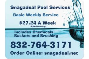 order online Basic Pool cleaning
